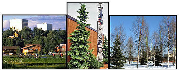 Community Forestry in Alaska