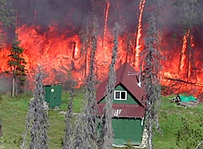 Flames encroaching on a cabin on the Kenai Peninsula. The fire is burning in beetle-killed trees.