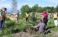 Community Forestry employees working with the public to properly plant a tree.